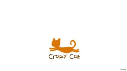crazy cat white