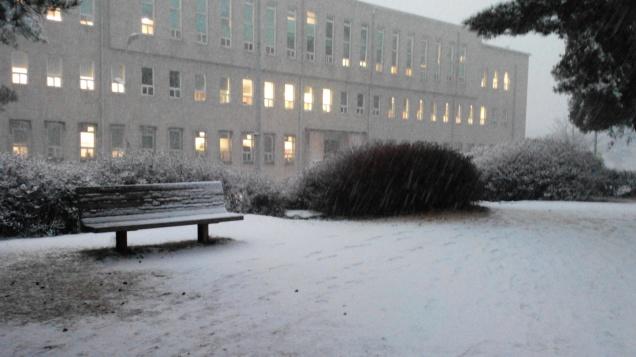 Seoultech - Dec 15, 2014